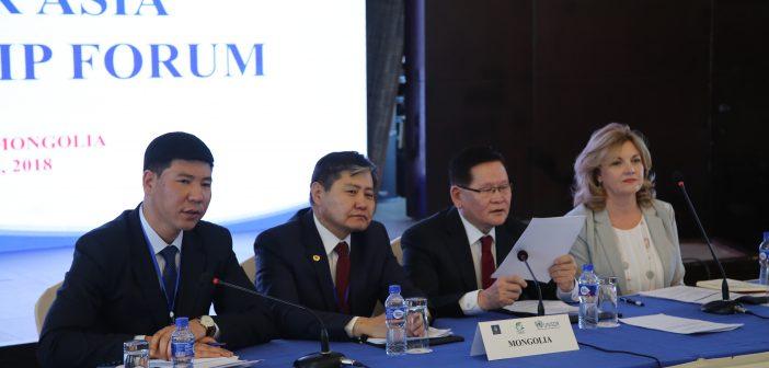 Монгол Улс гамшгийн аюулыг бууруулах манлайллаа Азид харуулна