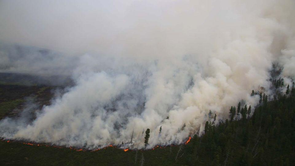 Image result for сэлэнгэд хээрийн түймэр